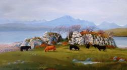 Cows at Tokavaig