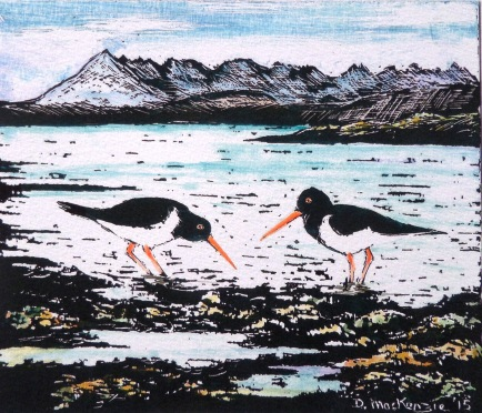 Oystercatchers & Cuillins
